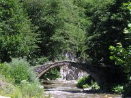 Bridge over the Buinovska river to the entrance of Yagodinska cave