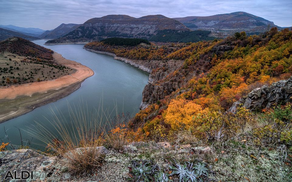 Meanders of the Arda River near Kardzhali