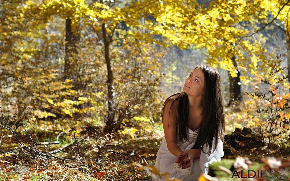 Fairies girls in autumn forest