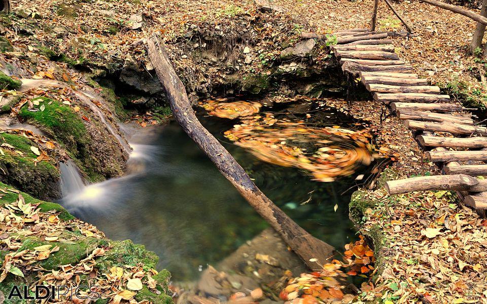 Creek near the path
