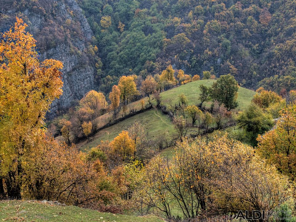 Mountain meadows near villages around Ardino