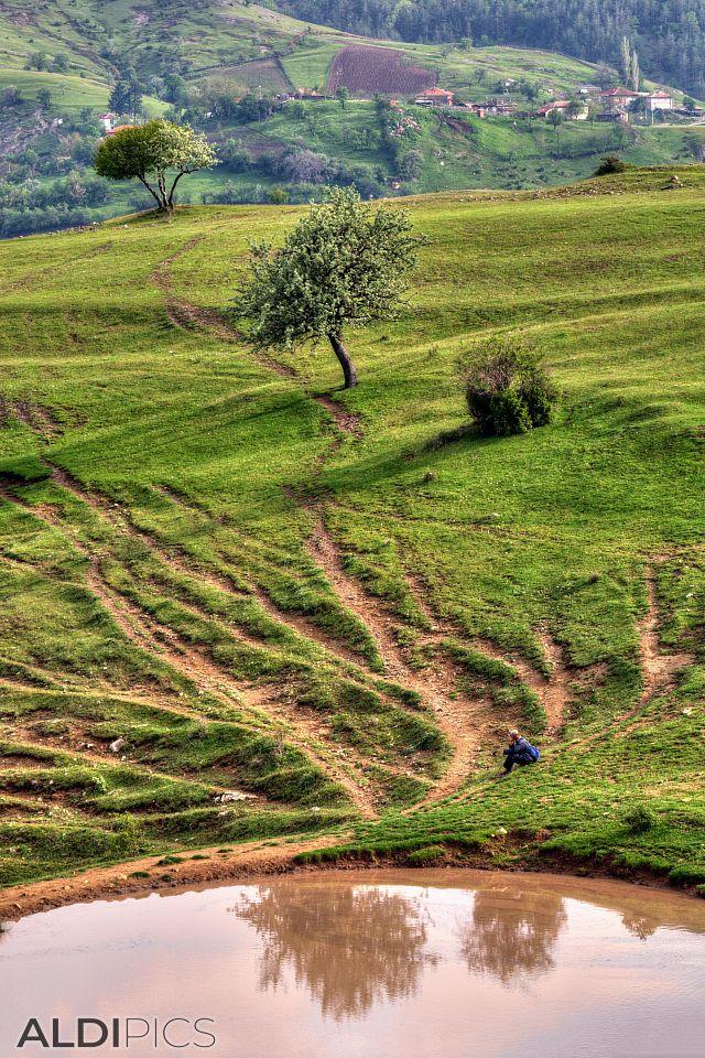 Fields near Kardzhali