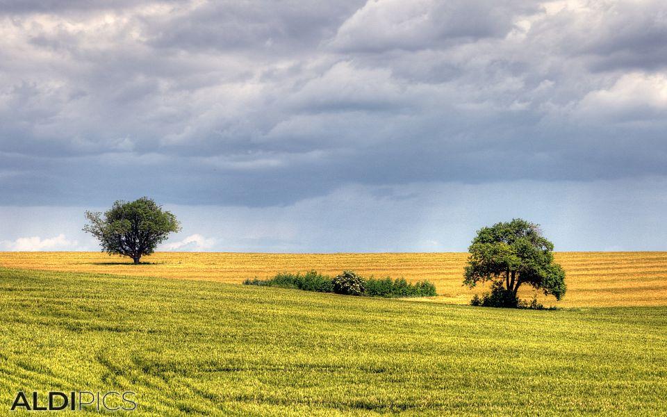 Fields near Stara Zagora