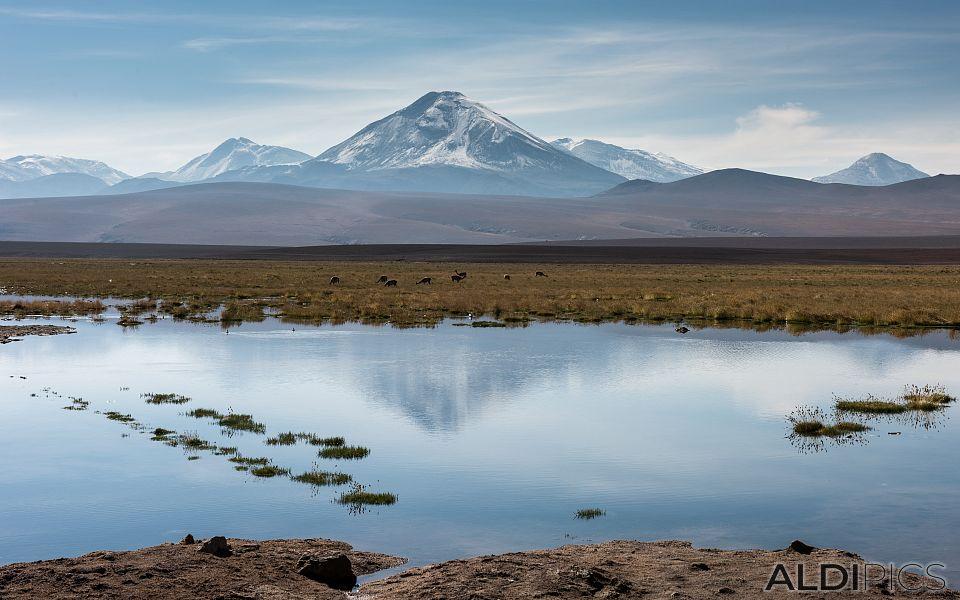 Landscapes from Atacama