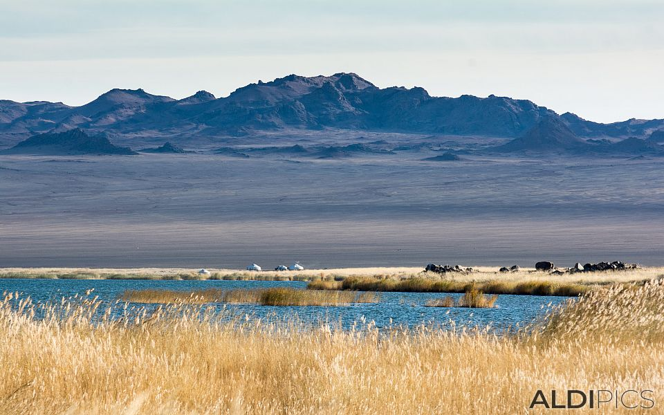 Езерото Ачит-Нуур