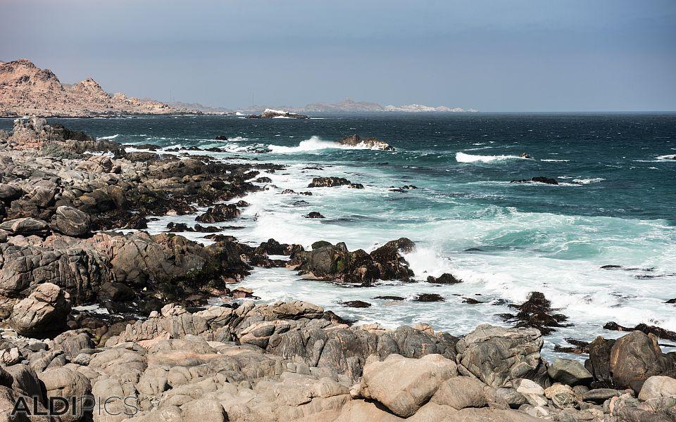 Coast of Peru