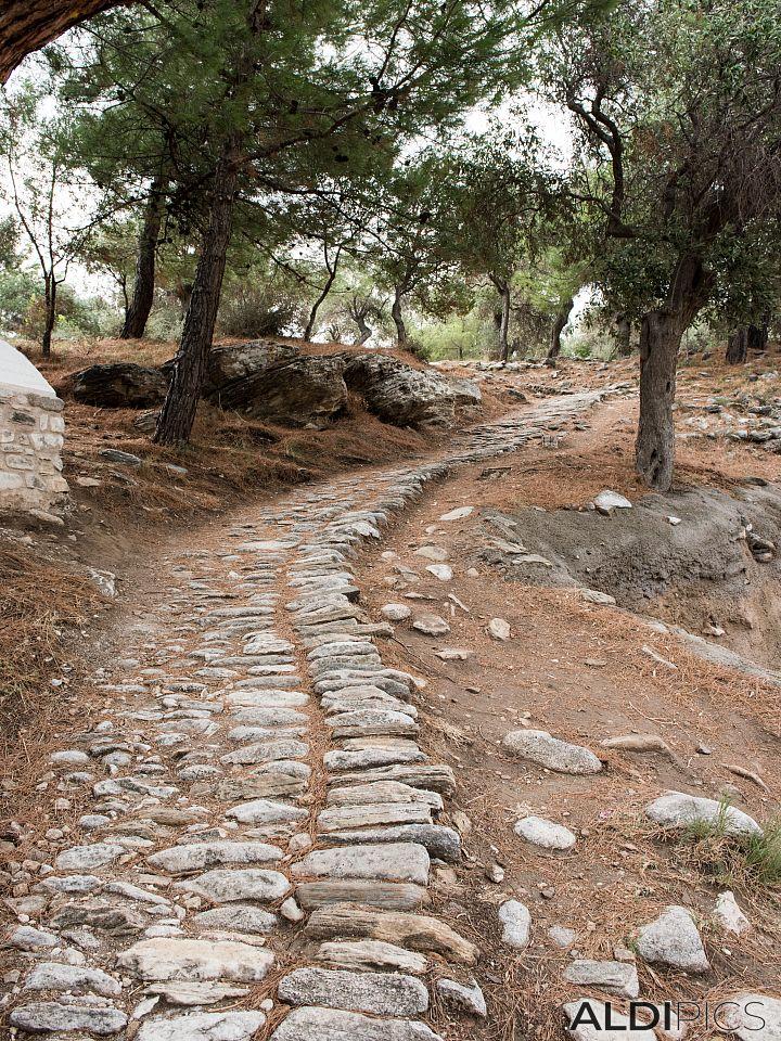По каменната пътека
