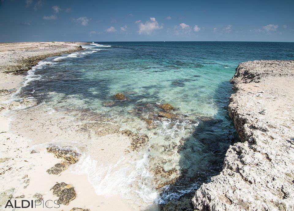 Coast of Aruba