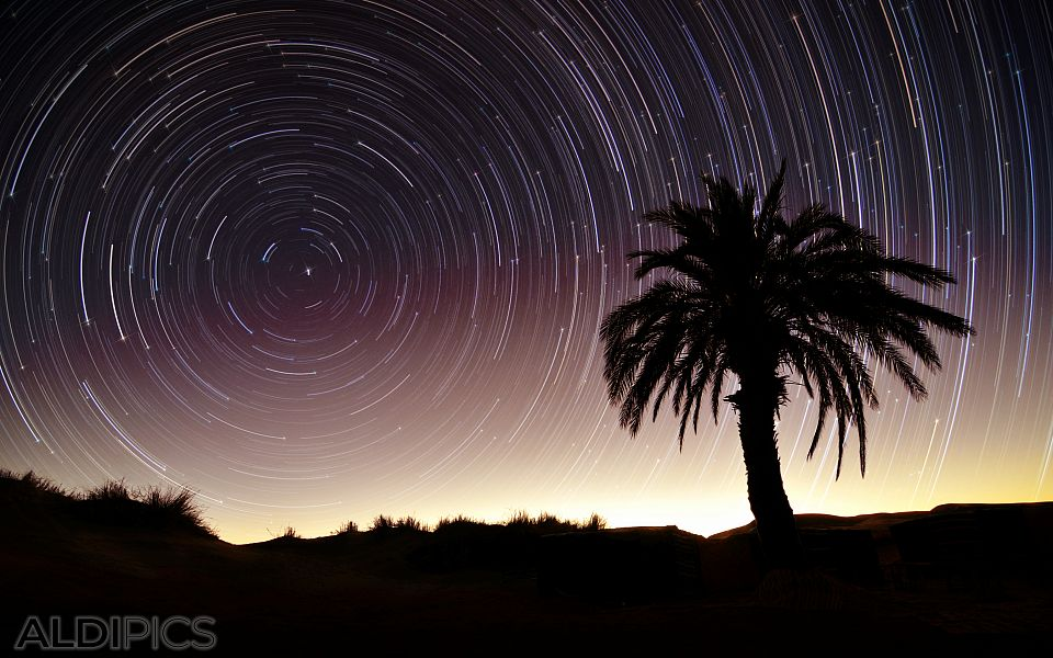 Startrails in Sahara