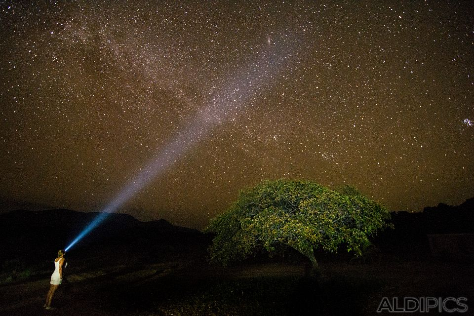 Звездното небе