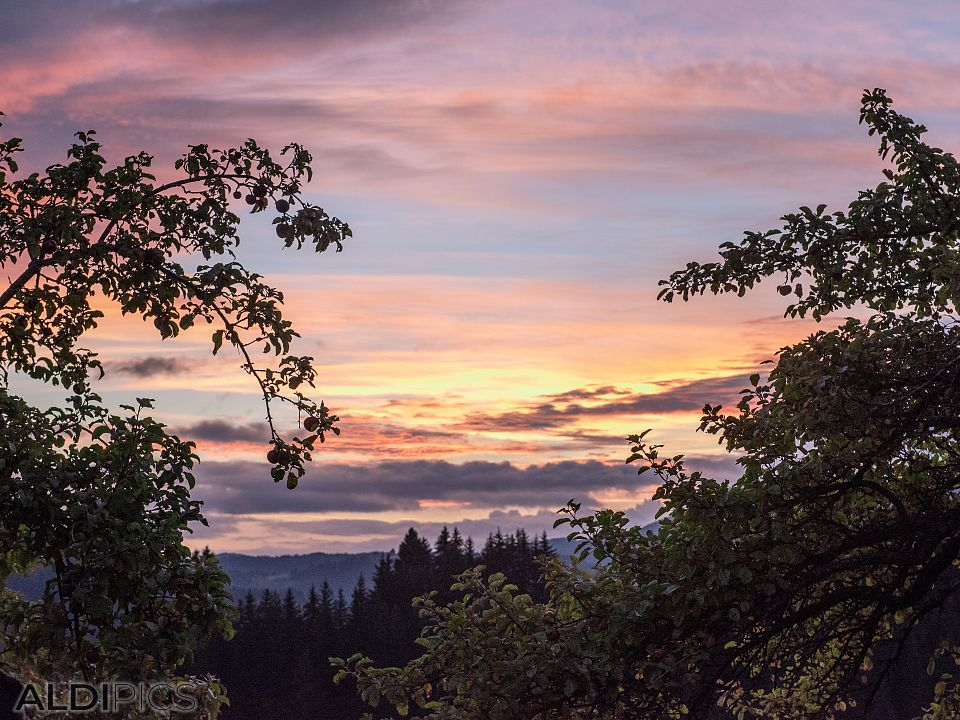 Sunrise at Gela