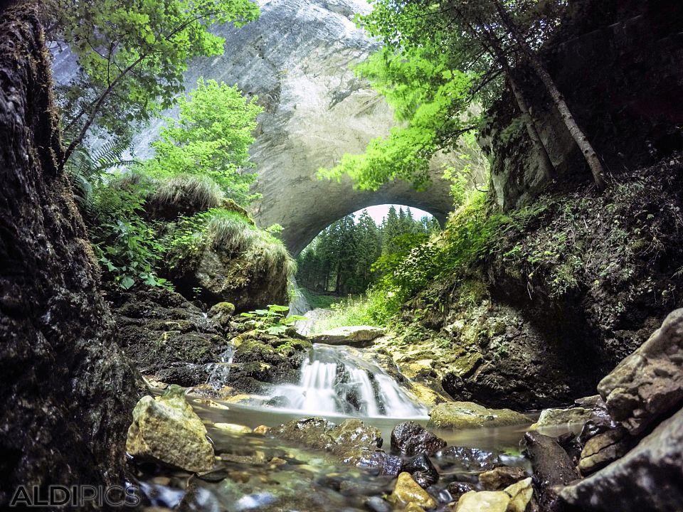 Wonderful Bridges