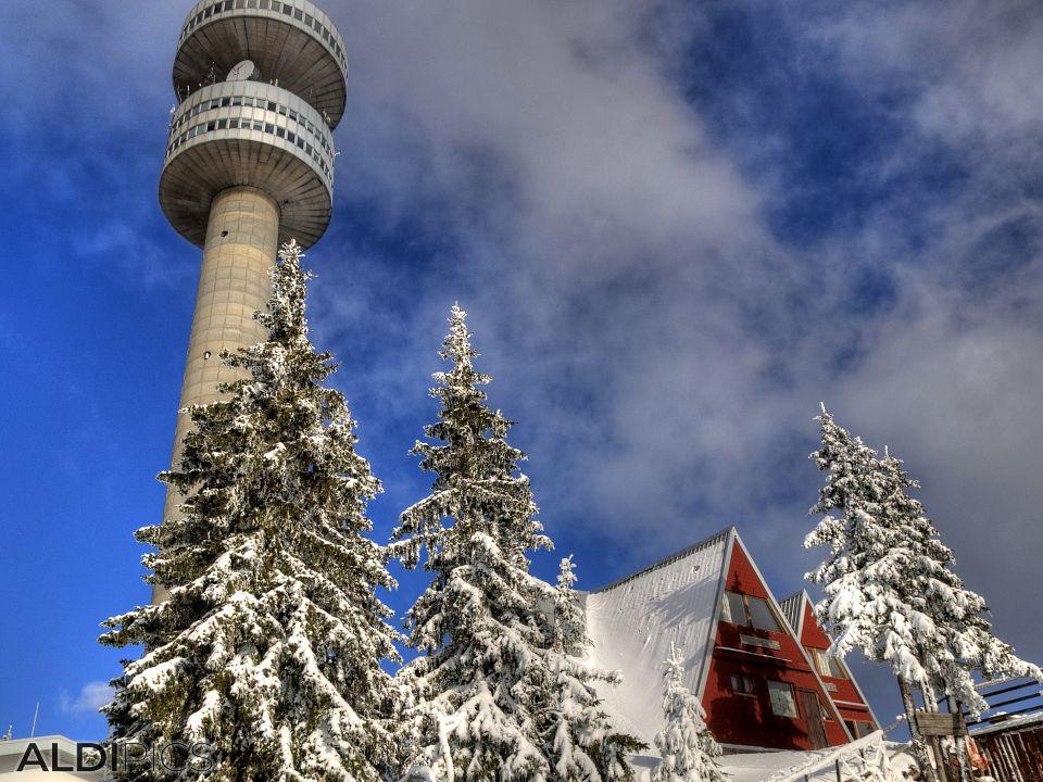 Снежни пейзажи от Пампорово